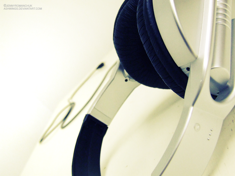 these headphones by Ashwings
