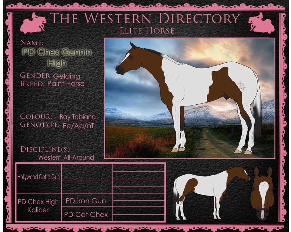 Nie-WD Elite 102 by painted-cowgirl