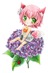 :C: Haruna