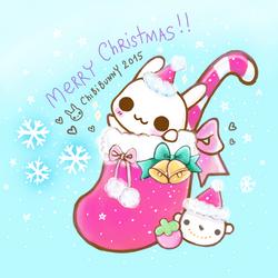 Merry Christmas Bunny