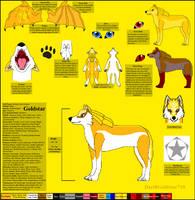 Goldstar Ref Sheet by DarthGoldstar710
