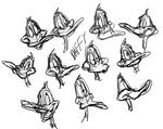 Daffy Faces