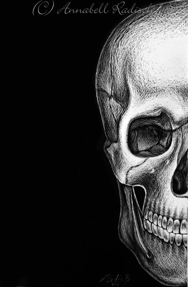 Skull by Isisnofret