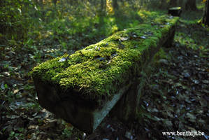 Bench by BenThijs