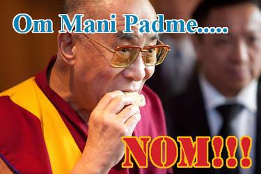 The Dalai Lama's Grace by DanloTheWild