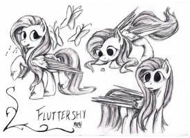 Fluttershy Sketches by NavigatorAlligator