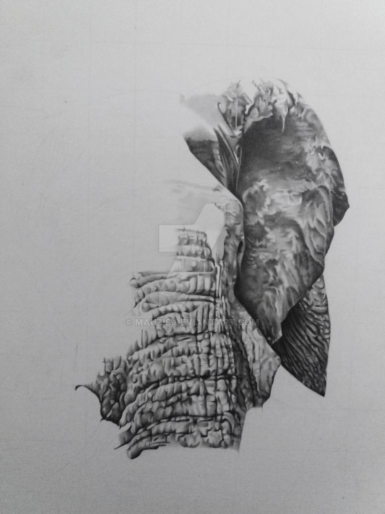 wip Elephant by MAUZIS