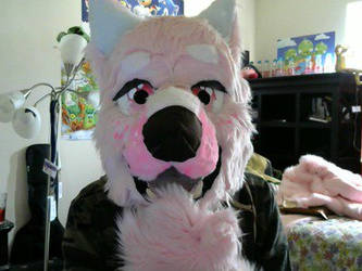 Fursuit partial by TSRings