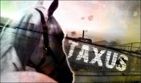 Taxus | Kormada RPG Character by CinderhawkCreative