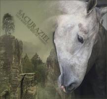 Sacurazial | Kormada RPG Character by CinderhawkCreative