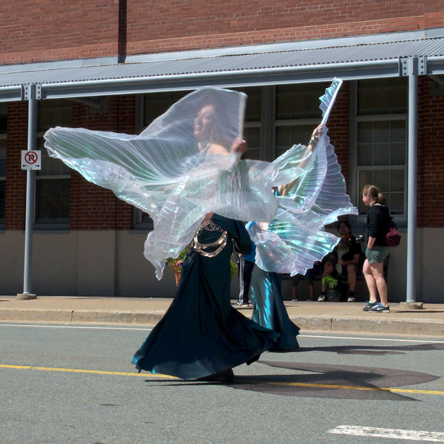 Halifax Multicultural Festival Parade-50902 by ggillespie