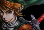 Link from the Legend of Zelda (twilight princess)