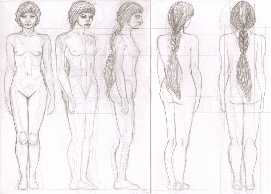 Female Anatomy Study by serpentyl on DeviantArt