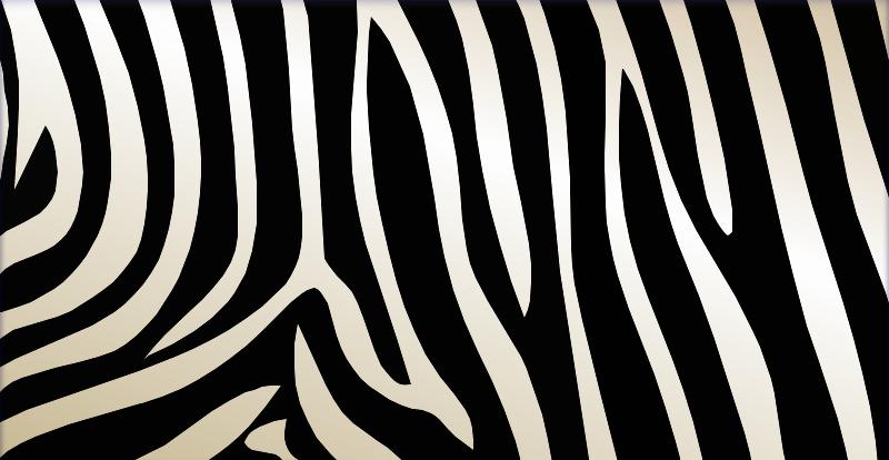 Zebra Texture by girlnpurple88