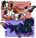 . : Fish Themed Dog Adopts : Auction : 1/2 Open :