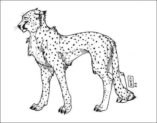 Cheetah Lineart by kataviech on DeviantArt