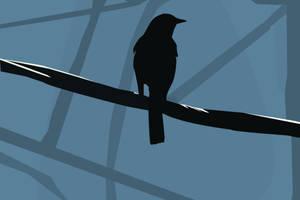 .:silhouette bird:. by cajunbaby