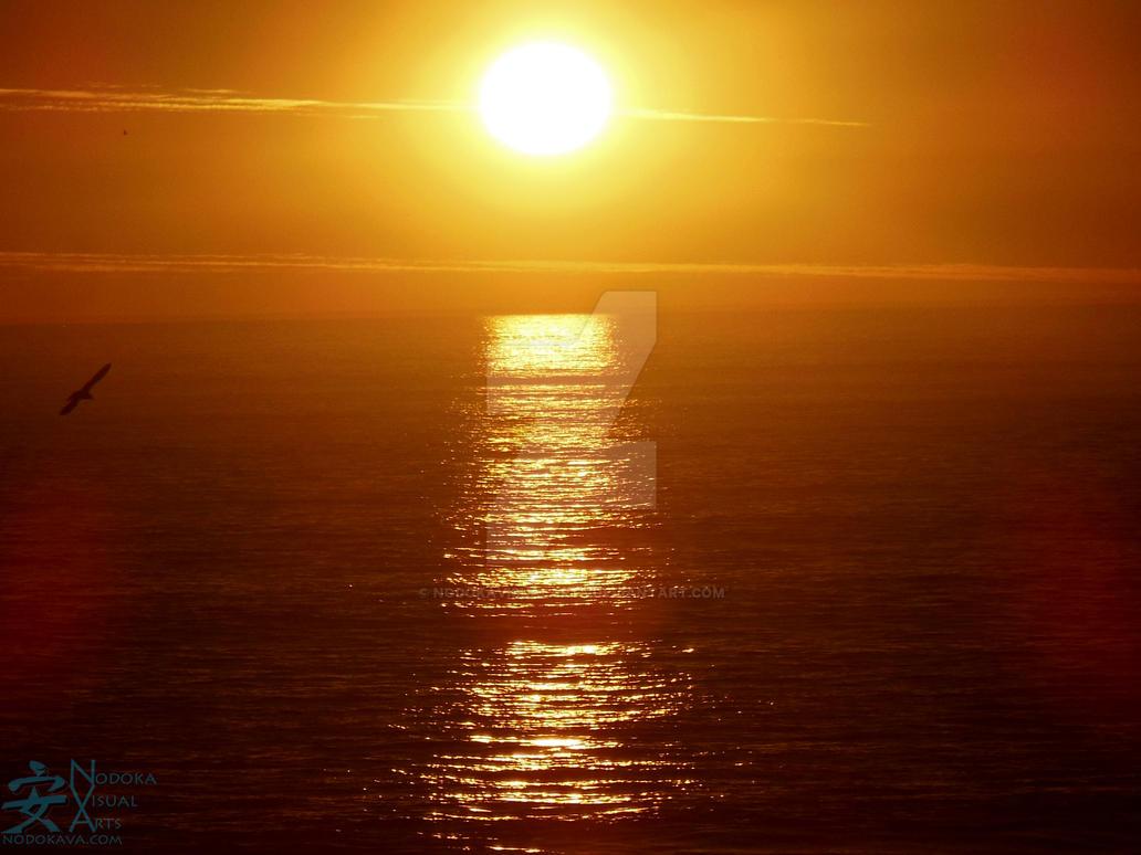 Oceanside Beach Sunset by NodokaVisualArts
