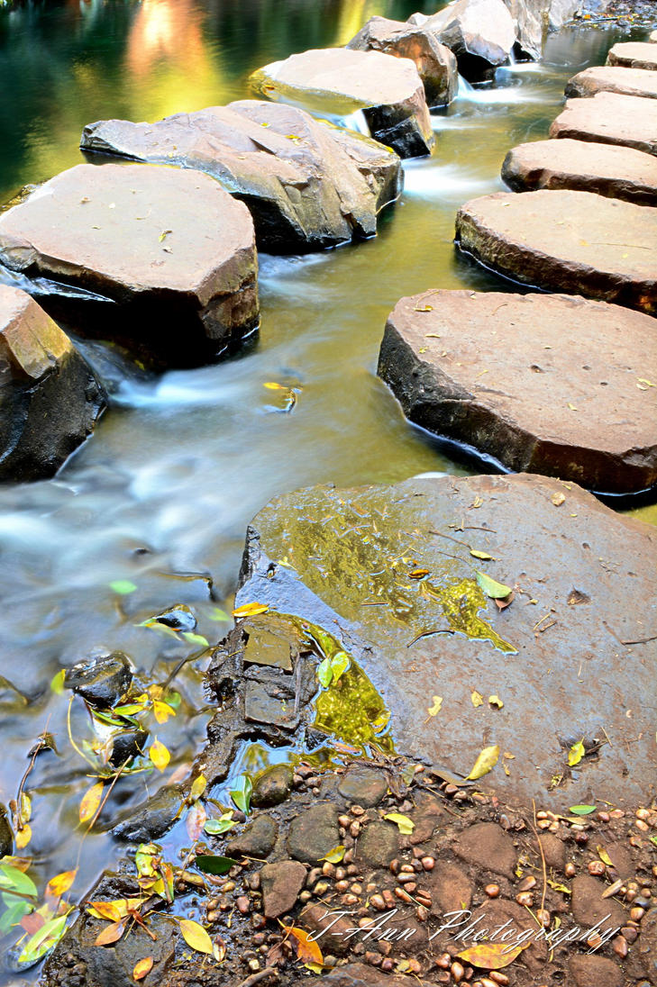 Stepping Stones by T-Ann-Photography