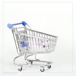 Herr Hildezart likes shopping