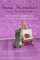 HerrHildezart invitation card
