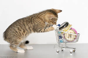 Kitty-mart 01 by hoschie