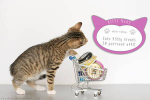 Kitty-mart 02 by hoschie