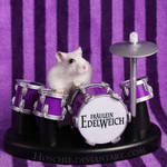 Frl. Edelweich is a Drumster