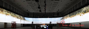 really wide screen