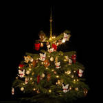 My Christmas-berry tree 2012 by hoschie