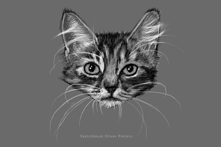 Digital cat Sketch by hoschie
