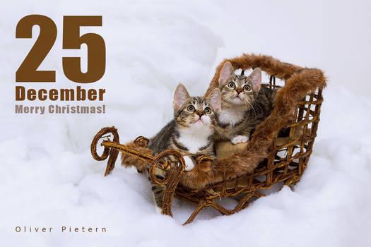 Dec 25 Merry Christmas!