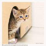 Ruebchen 5 - Cuteness Against Corona