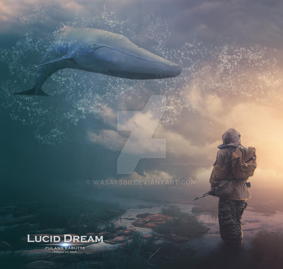 Lucid Dream by wasaps00