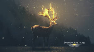 Mystical Creature by wasaps00