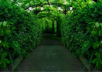 el laberinto del camino by nayareth