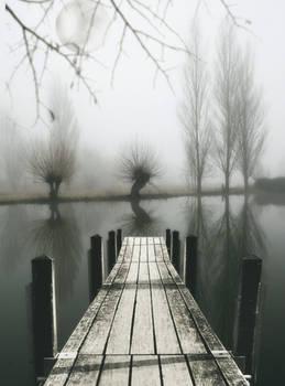 Niebla de esperanza