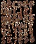 PNG abecedario de ramas