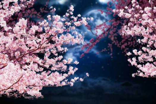 La flor de cerezo de la luna