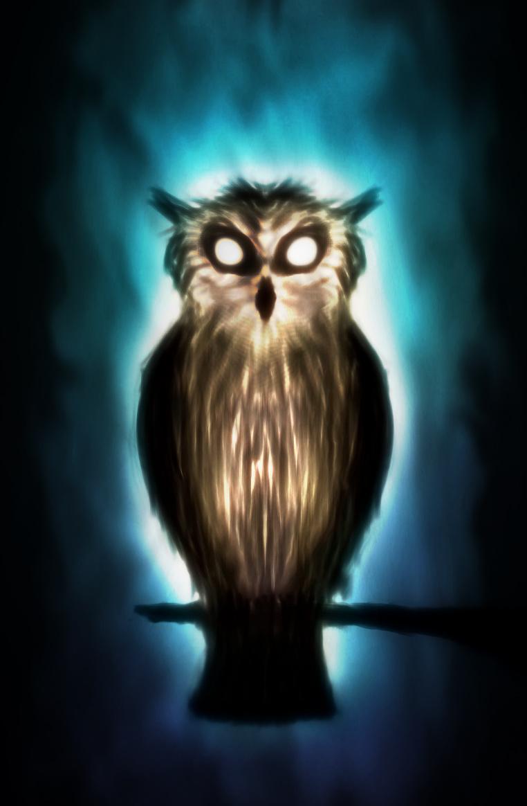 Ghost Owl by ark4n