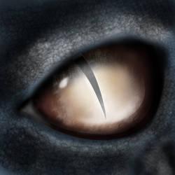 Dragon Eye by ark4n