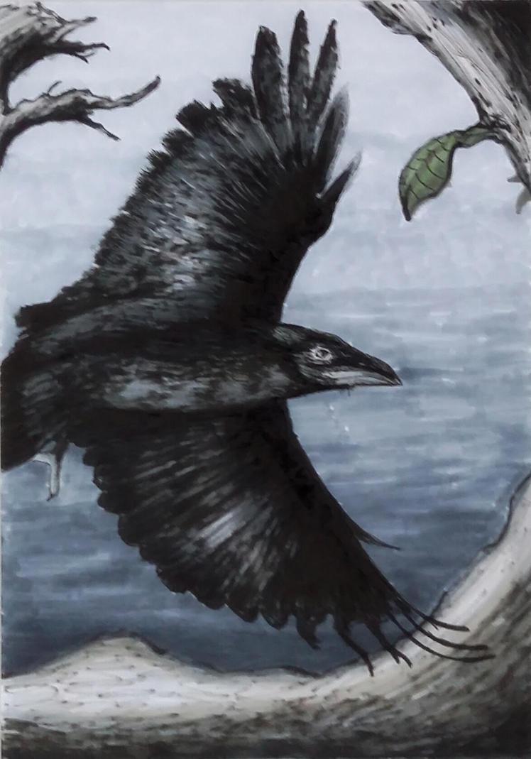 Dark wings by ark4n