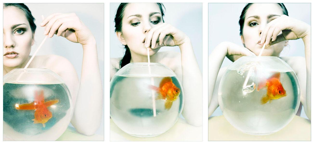 Go Fish Trio