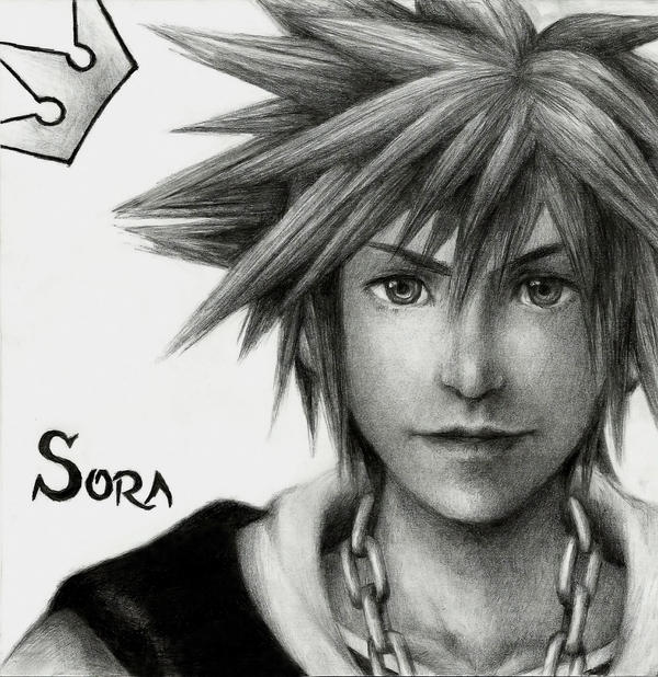 Sora by friedChicken365