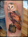Watercolor Owl tattoo