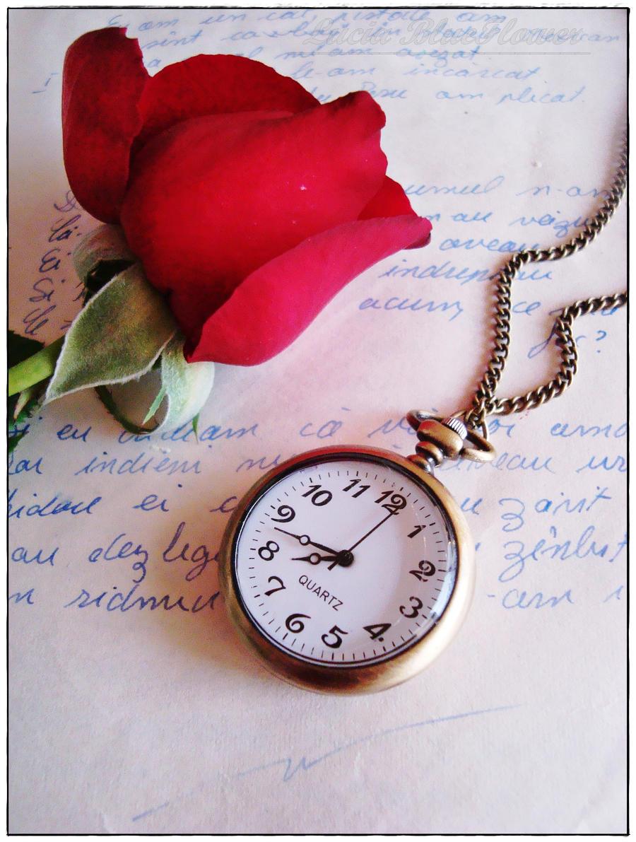 never be forgotten by LuciaBlueFlower