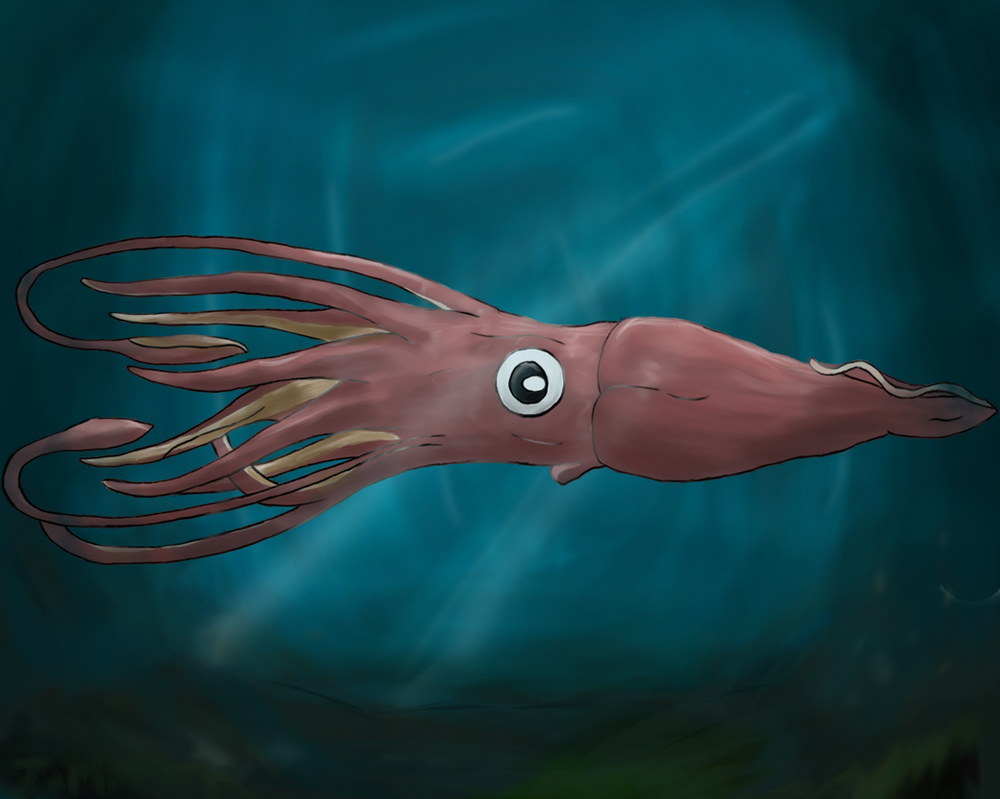 Giant Squid by ZolfyxTolfy on DeviantArt