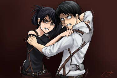 Veena vs. Levi Fighting Doodle by Vhenyfire