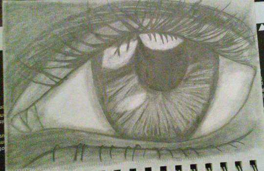 Your World Through My Eyes