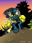 Wolverine by Lakcoo2u